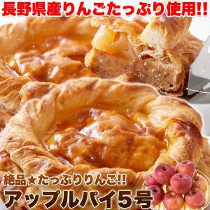 アップルパイ 5号 たっぷりりんご 国産 絶品