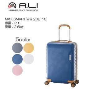 アジアラゲージ スーツケース ・MAXSMART・MS-202-18|masuya-bag