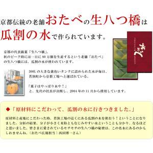 あすつく非対応 常温便 特産品 福井県 ご当地ミネラルウォーター!日本の名水百選、わかさ瓜割の水(2L×6本)[軟水/飲料水/産直/送料無料]|masuyone|04