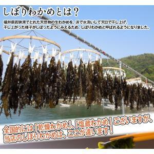 【在庫切れ】天然乾わかめ50g リアス式海岸福井県若狭湾の中でもラムサール条約登録の三方五湖に面する海が育んだ天然もの [ワカメ/産直/メール便]|masuyone|05