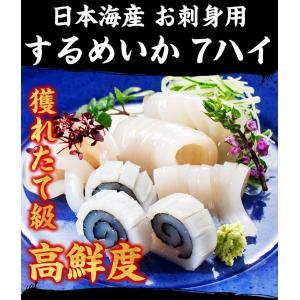 [生スルメイカ  烏賊] 解凍後に吸盤が吸いつく鮮度♪ 日本海産の生するめいか姿 中型×7ハイ 約2kg[生/急速冷凍/冷凍便/送料無料]|masuyone|06