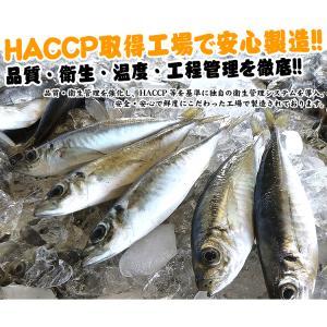 [おかず アジ ナゲット]魚嫌いさんも青魚パクパク♪フィッシュナゲット1kg 約20g×50個入[お弁当にも/国産アジ使用/冷凍便/送料無料]|masuyone|05
