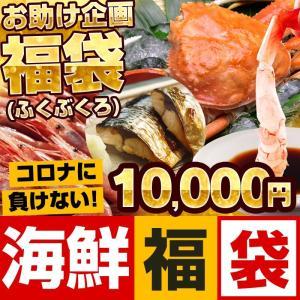父の日 グルメギフト 復興 復袋 福袋 海鮮10000円セット(蟹 えび 干物 当店おまかせ合計2....