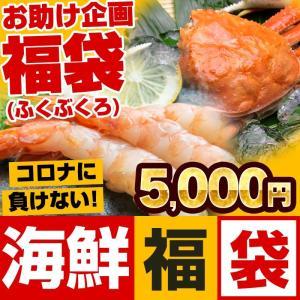 父の日 グルメギフト 復袋 福袋 海鮮5000円セット(蟹 えび 干物 当店おまかせ合計1.2kg ...