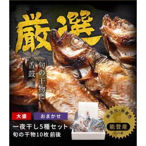 [お歳暮]北陸能登の旬の魚5種を食べ比べ、無添加熟成一夜干し干物セット(10枚以上)[冷凍便/同梱は不可/送料無料]|masuyone|05