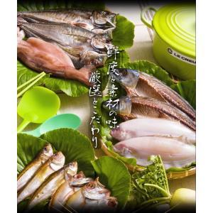 [お歳暮]北陸能登の旬の魚5種を食べ比べ、無添加熟成一夜干し干物セット(10枚以上)[冷凍便/同梱は不可/送料無料]|masuyone|06