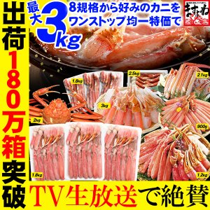 父の日33%OFF かに カニ  蟹 最大3kg選べる 刺身 2Lカット生ずわい総重量2kg超 3L...