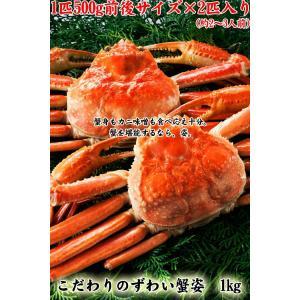 ※在庫切れ※【あすつく非対応】蟹味噌(カニみそ)も旨いズワイ蟹姿1kg(ボイル済 500g前後×2)[かにミソ/カニ/ズワイ/冷凍便/送料無料]|masuyone|08