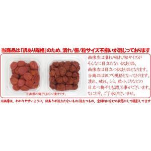 [常温便]【訳あり】永平寺御用達、昔ながらの味、伝統を守る無添加!福井梅干しシソ漬1kg(塩分18%)[常温便/送料無料]|masuyone|02