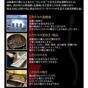 [愛知県 三河 うなぎ ウナギ 鰻]歴史と伝統の本場三河の風情も粋に嗜む!国産うなぎ蒲焼き2種盛[冷凍便/送料無料]|masuyone|03
