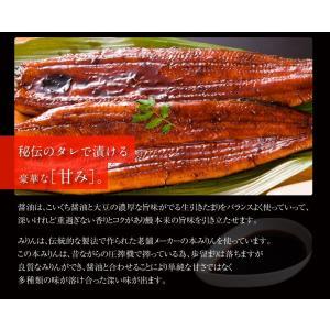 [愛知県 三河 うなぎ ウナギ 鰻]歴史と伝統の本場三河の風情も粋に嗜む!国産うなぎ蒲焼き2種盛[冷凍便/送料無料]|masuyone|05