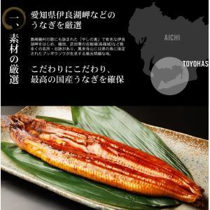 [三河 うなぎ ウナギ 鰻] 歴史と伝統ある本場三河の国産特大うなぎ蒲焼き3種盛[頭無し約30cm&200g前後サイズ使用/冷凍便/送料無料]|masuyone|05