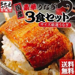 ※在庫切れ中※ 本場三河の歴史と伝統も味わう国産うなぎ蒲焼き90g×3食[冷凍便/送料無料]|masuyone