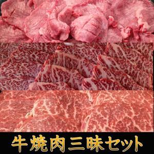 焼肉 牛焼肉三昧セット 送料無料 牛肉 アメリカ産牛タン 福島牛カルビ 福島牛 赤身もも キャンプ 肉|matador