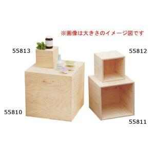 HP 5面体DP BOX(無塗装)型番55812|matakatsu