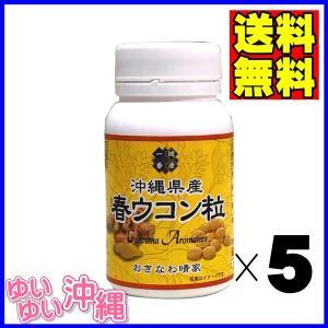 沖縄県産 春ウコン粒 100g(約500粒)×5個|matayoshiyakusouen