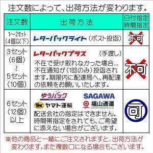 沖縄産春ウコン粉末 100g|matayoshiyakusouen|02