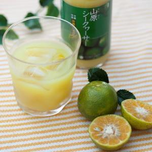 山原シークヮーサー 果汁100% 300ml|matayoshiyakusouen|02