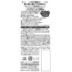 スキンライフ 薬用洗顔フォーム(130g)/ 牛乳石鹸 matinozakka 02