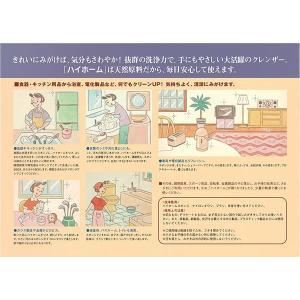 ハイホーム(400g)/ 日本珪華化学工業|matinozakka|02