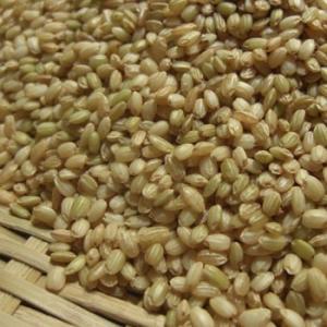 ■名 称:緑米 ■賞味期限:360日 ■保存方法:高温多湿、直射日光を避けて保管してください。 ■内...