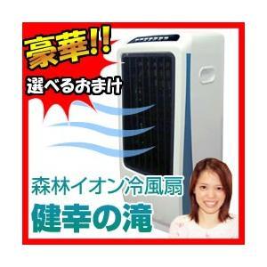 新林イオン冷風扇 健幸の滝 健康の滝 冷風扇 加湿器 空気清浄機 冷風機 リモコン付き冷風扇|matsucame