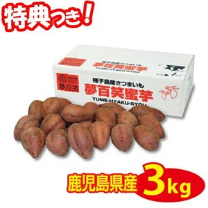 夢百笑 種子島蜜芋 Sサイズさつまいも 3kg入 S芋約21本 種子島蜜イモ 種子島蜜いも 種子島芋 焼芋 焼いも サツマイモ
