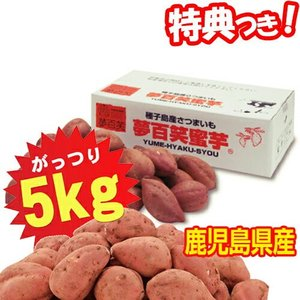 夢百笑 種子島蜜芋 Sサイズさつまいも 5kg入 S芋約34本 種子島蜜イモ 種子島蜜いも 種子島芋 焼芋 焼いも サツマイモ