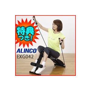 アルインコ マルチコンパクトジム EXG042  ALINCO マルチジム EXG-042 1台で多彩なエクササイズ  シットアップベンチ レッグマシン