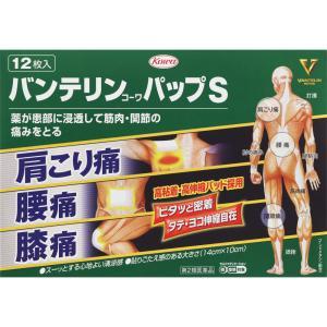 【第2類医薬品】興和 バンテリンコーワパップS 12枚
