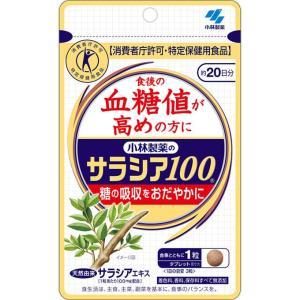 小林製薬 サラシア100 60粒の関連商品2