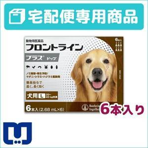 フロントラインプラス 犬用 L (20〜40kg) 6ピペット 動物用医薬品 【宅配便】
