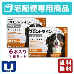 フロントラインプラス 犬用 XL (40〜60kg) 6ピペット 2箱セット 動物用医薬品 【宅配便】