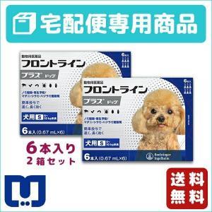 フロントラインプラス 犬用 S (5〜10kg) 6ピペット 2箱セット 動物用医薬品 【宅配便】