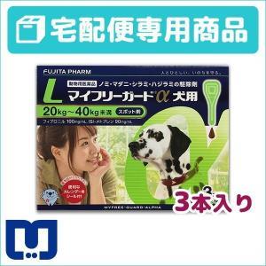 マイフリーガードα 犬用 L (20〜40kg) 3ピペット 動物用医薬品 【宅配便】