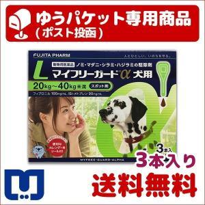マイフリーガードα 犬用 L (20〜40kg) 3本入 動...