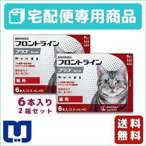 フロントラインプラス 猫用 6ピペット 2箱セット 動物用医薬品 【宅配便】