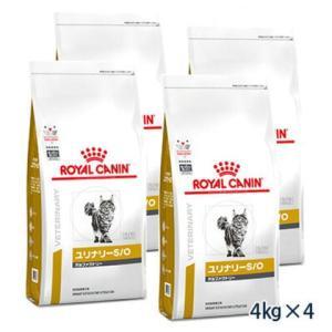C:ロイヤルカナン 猫用 pHコントロール 2 フィッシュテイスト 4kg (4袋セット) 療法食 賞味期限:2020/07/28以降(06月現在)|matsunami
