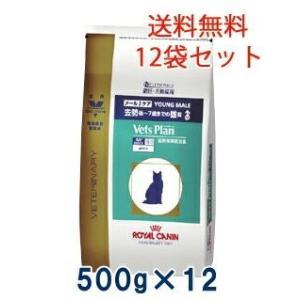 C:ロイヤルカナン ベッツプラン 猫用 メールケア 500g(12袋セット) 準療法食 賞味期限:2020/07/11以降(06月現在)|matsunami