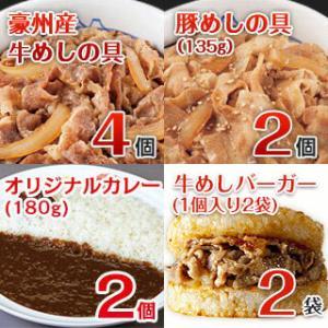 バラエティセット10食 冷凍(豪州産牛めし4個、豚めし2個、カレー2個、牛めしバーガー2個)|matsuyafoods