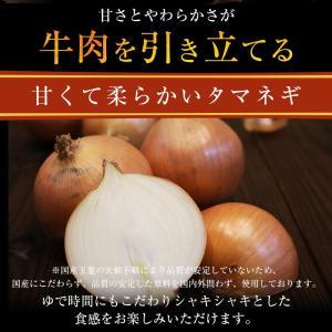 衝撃の46%オフ 松屋 牛めしの具(プレミアム仕様)30個 牛丼の具 牛肉 冷凍 |matsuyafoods|13