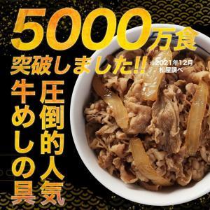 【6/10以降発送】 松屋 牛めしの具(プレミ...の詳細画像5