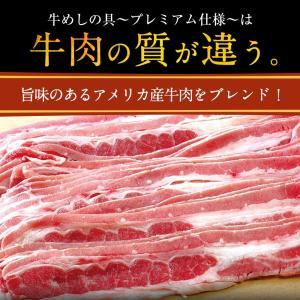 衝撃の46%オフ 松屋 牛めしの具(プレミアム仕様)30個 牛丼の具 牛肉 冷凍 |matsuyafoods|09