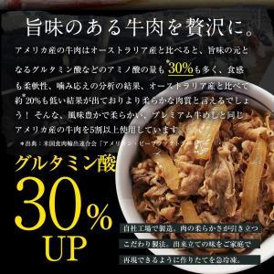 衝撃の46%オフ 松屋 牛めしの具(プレミアム仕様)30個 牛丼の具 牛肉 冷凍 |matsuyafoods|10