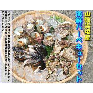 (送料無料)山陰浜坂港とれたて魚介満載「バーベキューセットA」 |matubagani