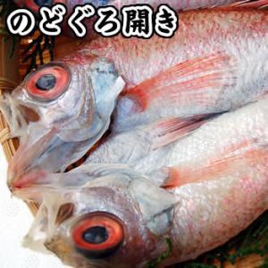 旬干し 超高級魚のどぐろ一夜干し(冷凍) 1枚 約170-200g程度 国産(山陰浜坂産)赤睦・ノドグロ・干物・開き|matubagani