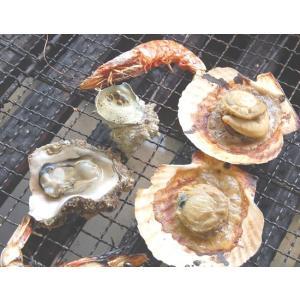 (送料無料)国産4種の海鮮バーベキューセット(冷凍)ホタテ(片貝)・サザエ・モサエビ、ホンビノスの4種入(さざえ、ほたて、帆立、bbq)|matubagani|03