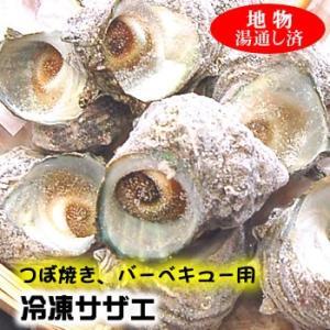 つぼ焼き・バーベキュー用サザエ【冷凍】20個≪冷凍発送専用≫さざえ|matubagani