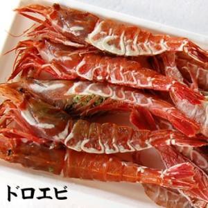 どろえび(冷凍) 約230g前後 大小混ざり (お刺身可) (浜坂産) (ガラエビ・トゲクロザコエビ) matubagani