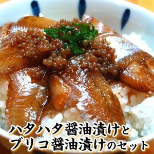 さかな屋自家製 「とろハタハタ漬け丼」と「ブリコ醤油漬け」のセット (冷凍)(はたはた、白ハタ)添加物未使用|matubagani